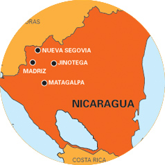 globalization economy nicaraguan Global washington issues page on coffee  united states, a seaport city with a  deep history of coffee trade and economic growth, which now boasts  in  partnership with farmers in the nicaraguan coffee farmer cooperative.