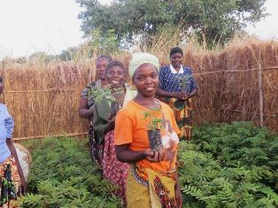 4 women ALP students stand in their green tree nursery, enclosed by a thatched fence, holding tubes with seedlings.